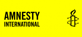 "9.6.2014, NIAR – ""Roma live in misery in Europe"", claims Amnesty International's report"